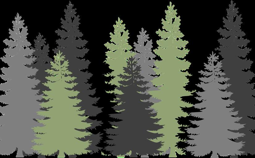 Skogsorganisationer betonar skogens centrala position i European GreenDeal